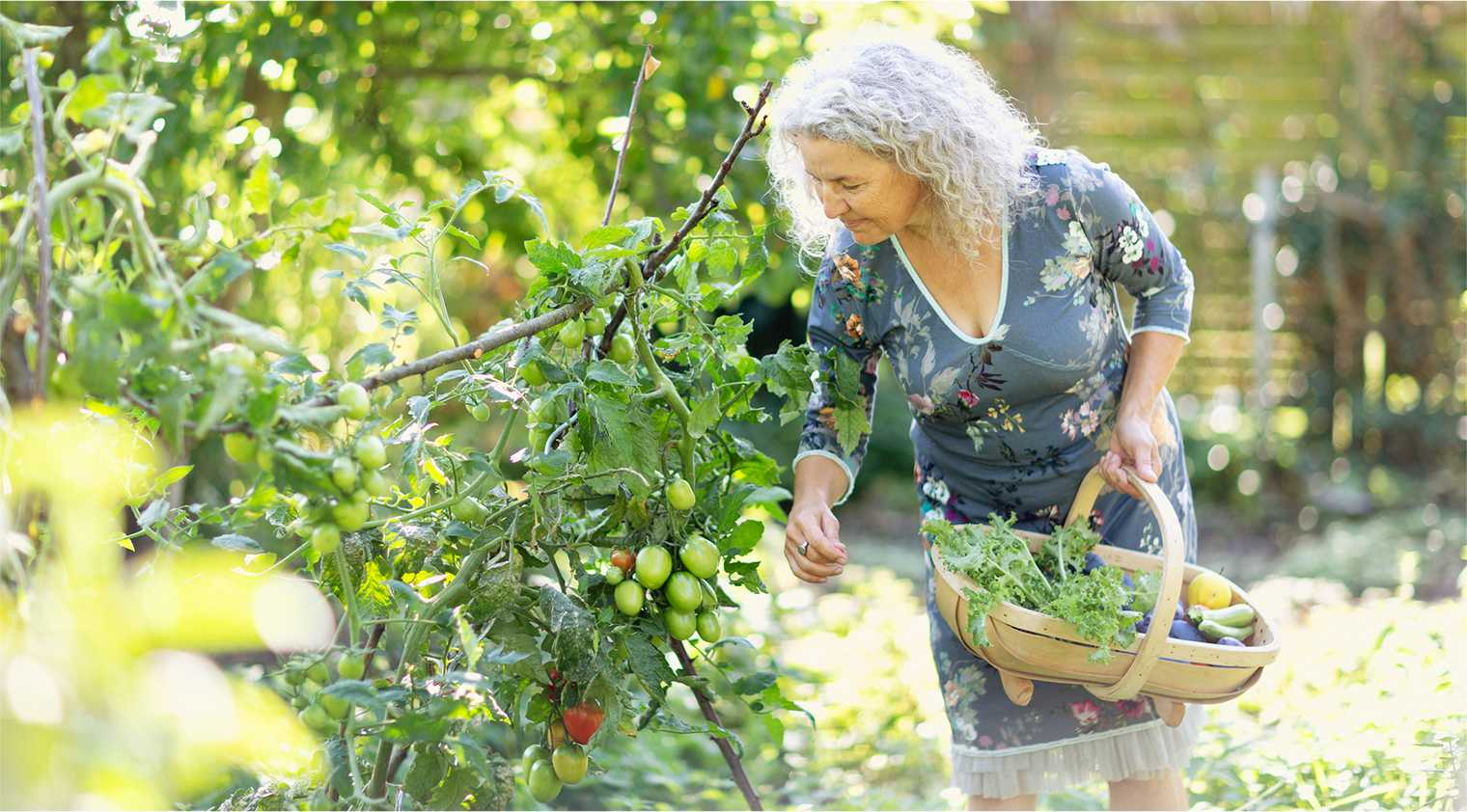 Greenhouses and landscaped gardens are just some of the things to look for in a Retirement Village